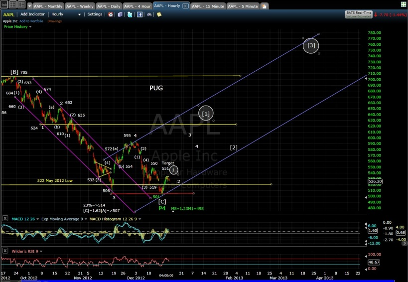 PUG AAPL 60-min chart EOD 12-19-12