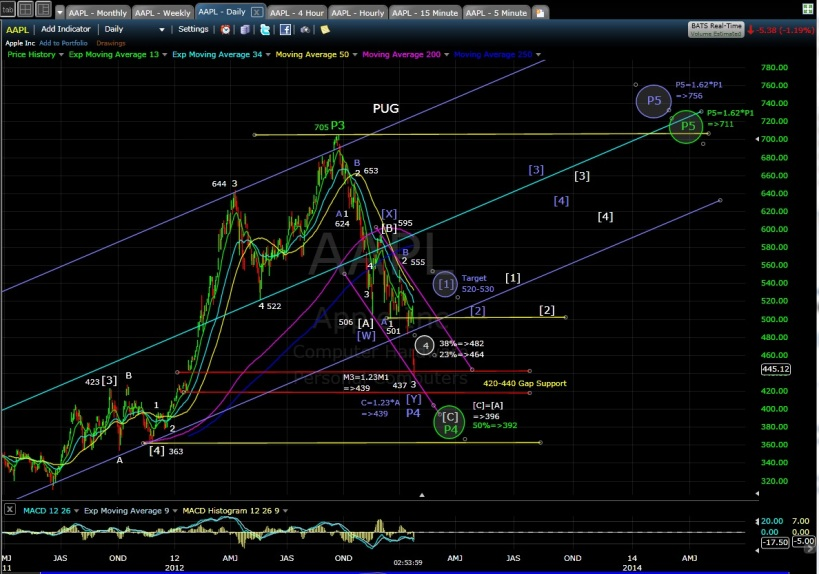 PUG AAPL Daily EOD 1-25-13