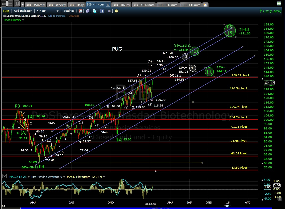 PUG BIB 4-hr chart EOD 1-8-15