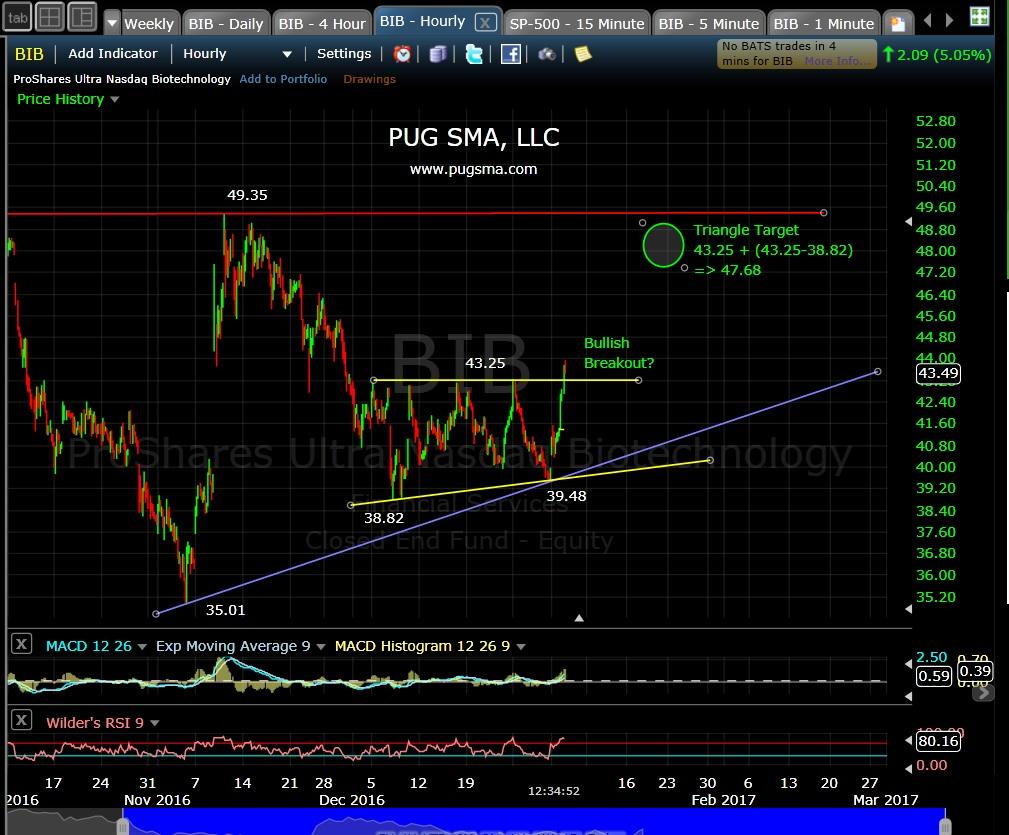 pug-bib-60-min-1-4-17