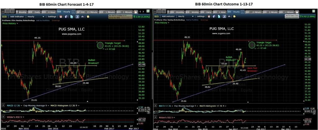 pug-bib-60-min-chart-1-4-17-to-1-13-17