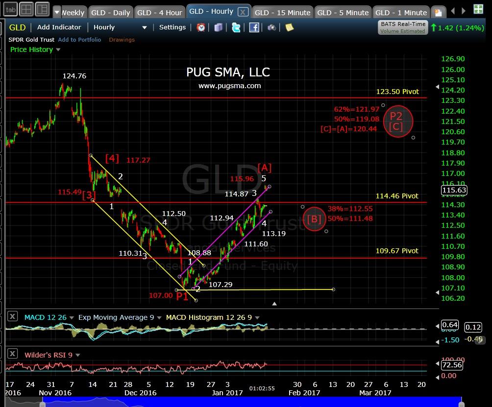 pug-gld-60-min-1-17-17
