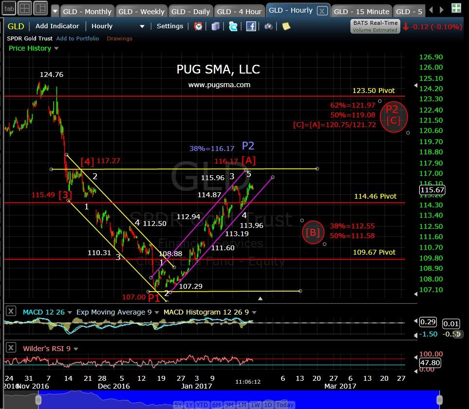 pug-gld-60-min-1-24-17